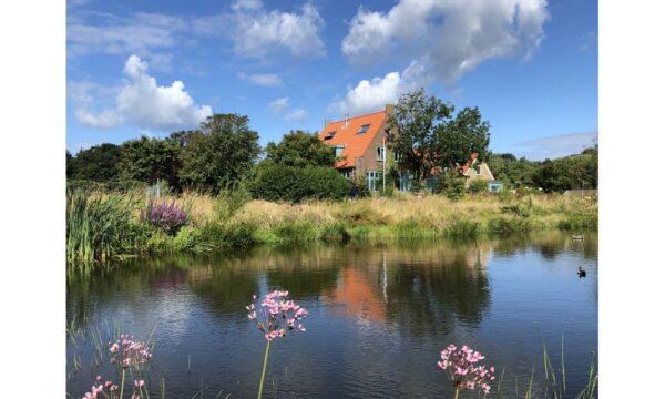 Natuurhuisje in Egmond aan den hoef 32679 - Nederland - Noord-holland - 8 personen