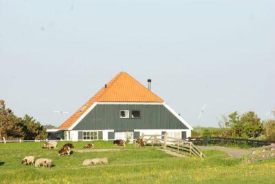 Natuurhuisje in Schoorl 36149 - Nederland - Noord-holland - 2 personen